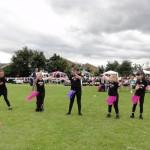 008 Larkrise School Fete 1st July 2012