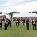 017 Bicknacre Festival & Country Show 17th September 2011
